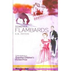 Domeniul Flambards