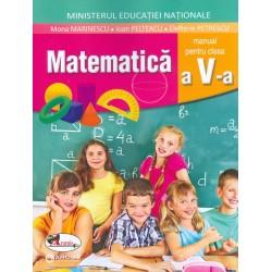 Matematica, clasa a V-a cu CD-Rom