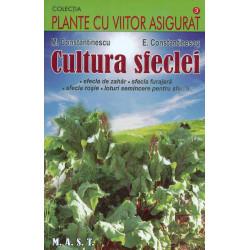 Cultura sfeclei