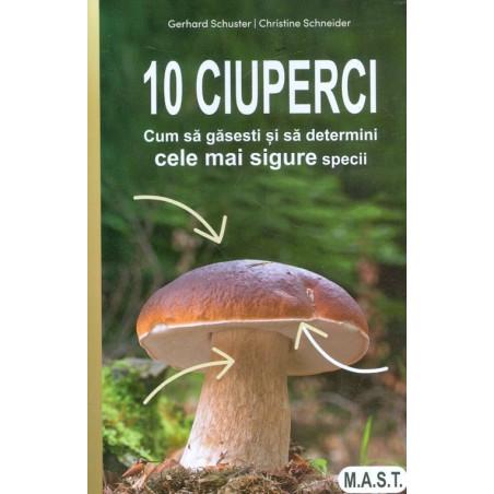 10 ciuperci. Cum sa gasesti...