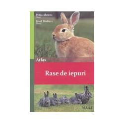Rase de iepuri