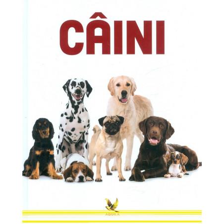 Caini