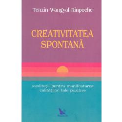Creativitatea spontana....
