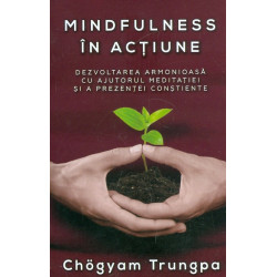 Mindfulness in actiune....