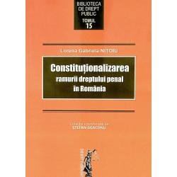 Constitutionalizarea...