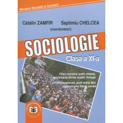 Sociologie, clasa a XI-a